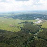 Земельные участки в Подмосковье. КП «Костинский лес».