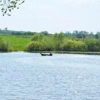 Земельные участки в Подмосковье. КП «Рыболово парк».