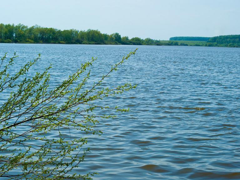 КП «Рыболово парк»